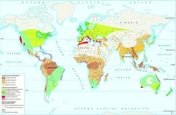 sector-primario-en-el-mundo